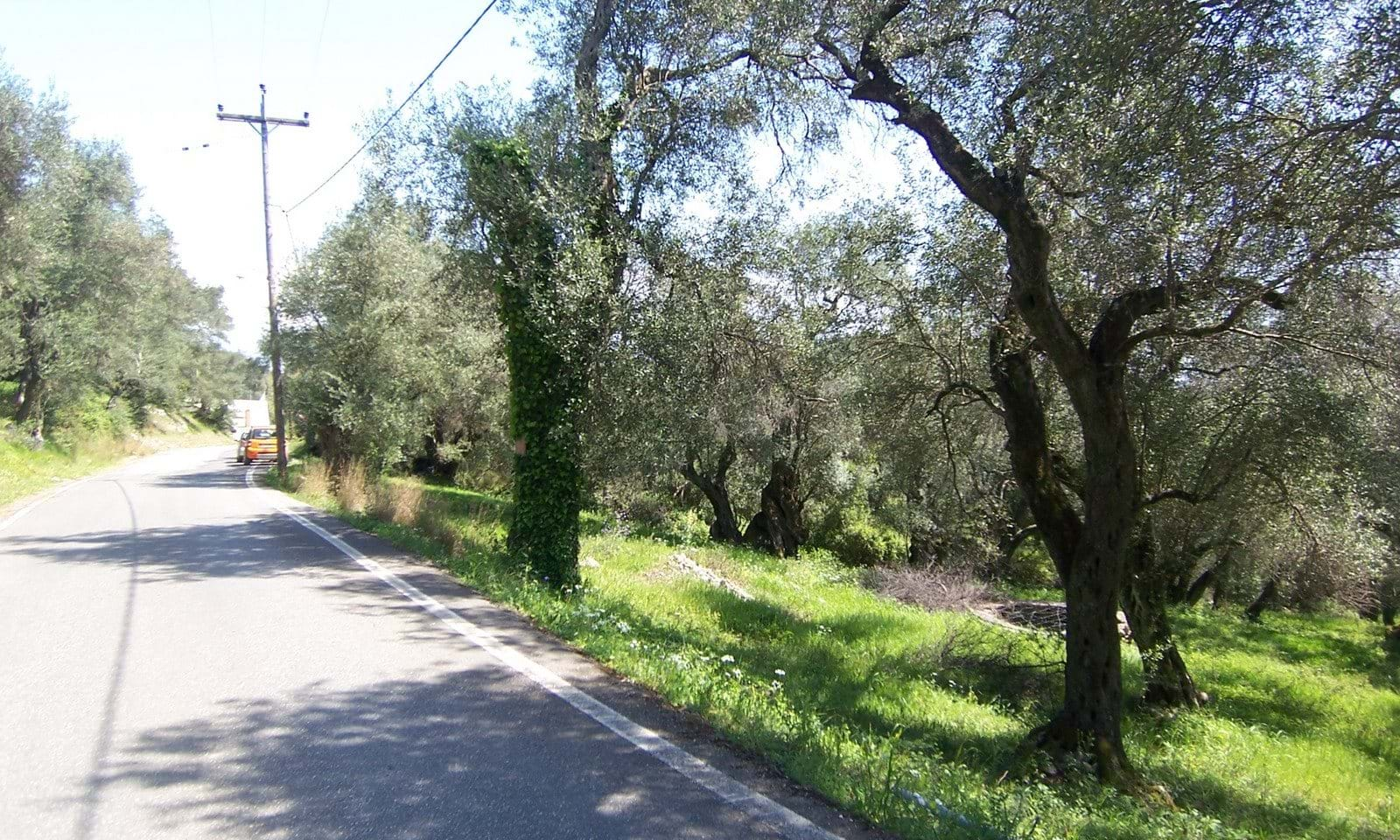 land for sale north corfu