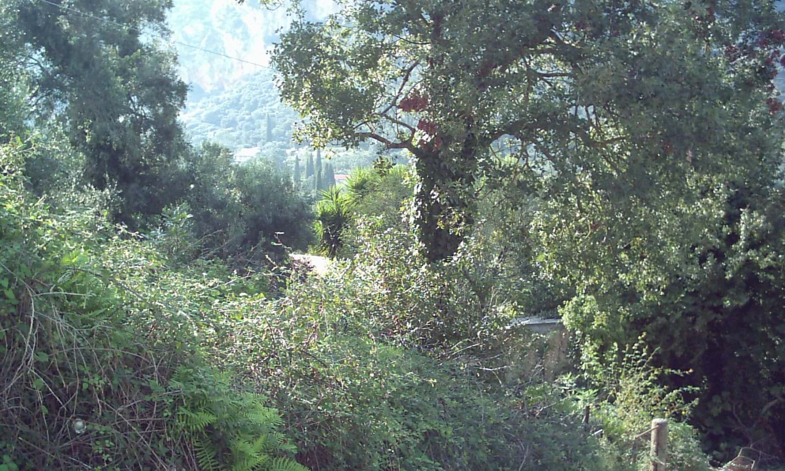Village land for sale in Corfu