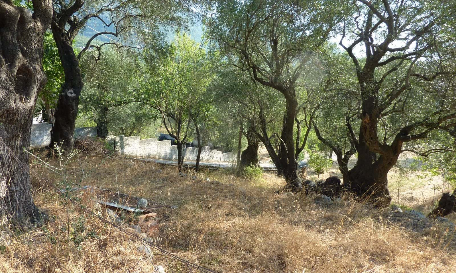 Land for sale Corfu