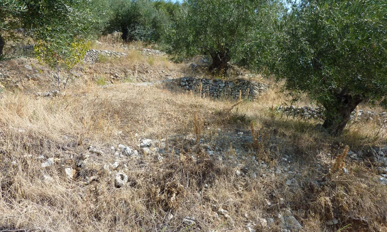 Corfu land and property for sale