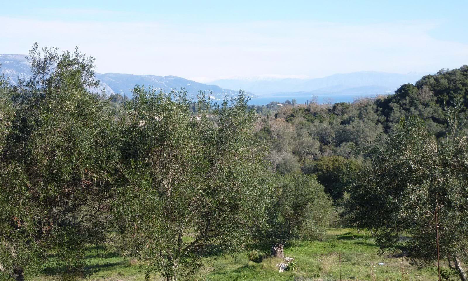 Property and land for sale in Corfu