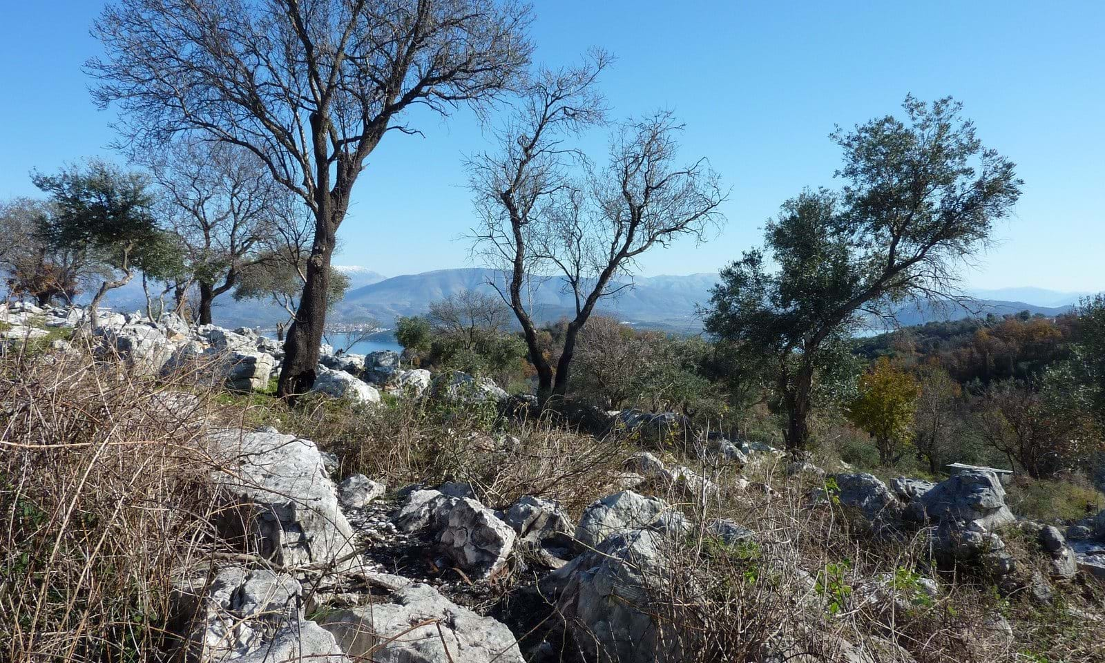 Off plan property for sale in Corfu