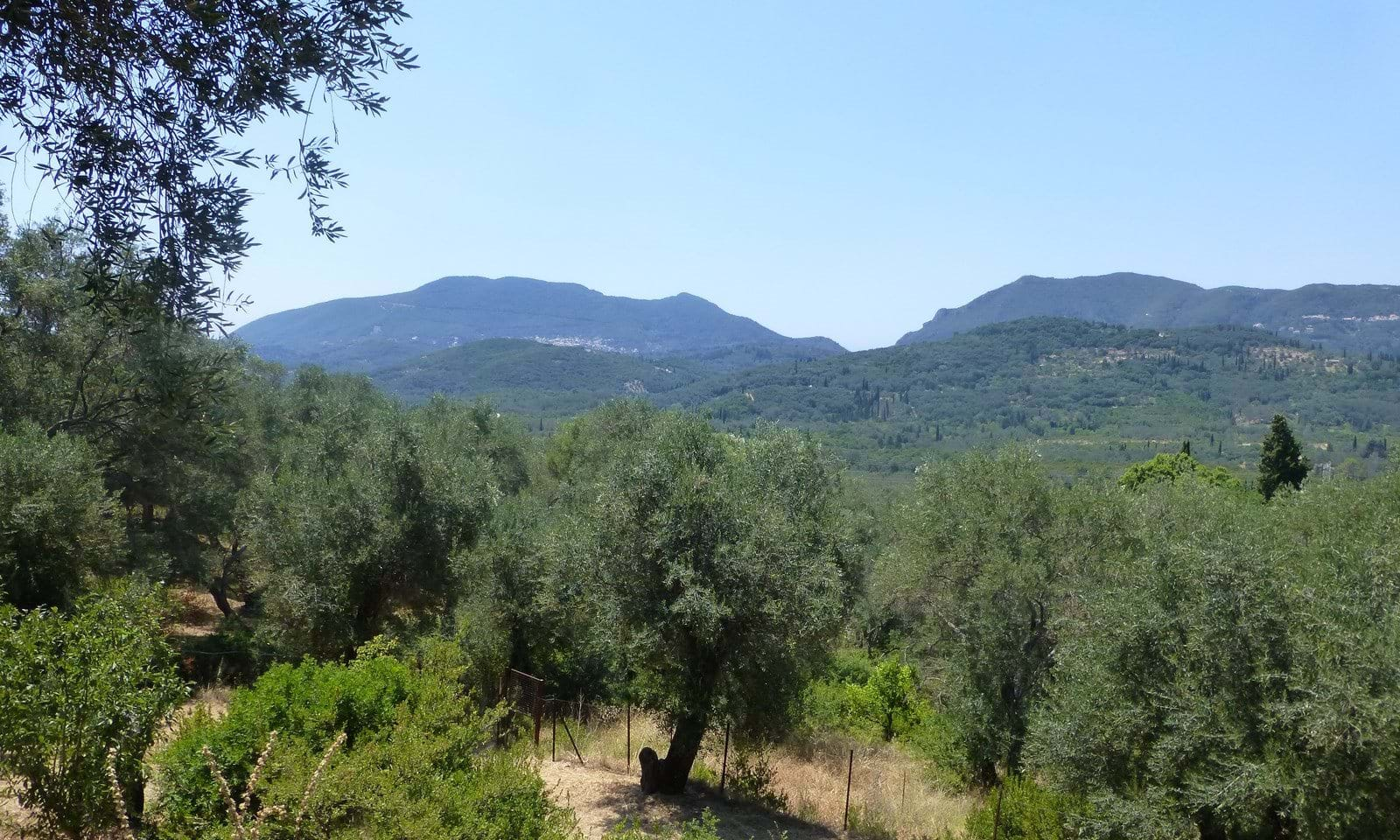 Property for sale in Strongili Corfu