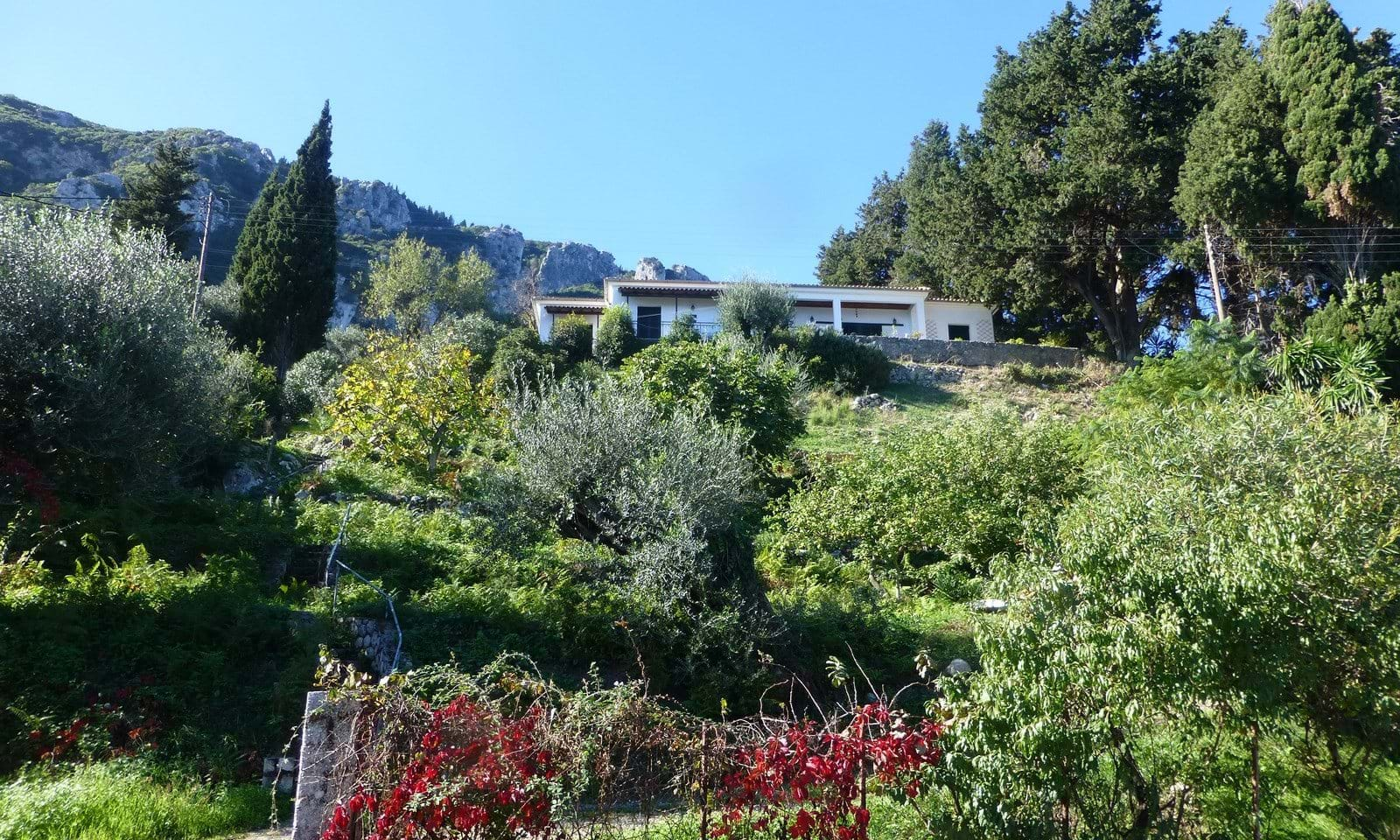 Property for sale in Corfu - on the sea