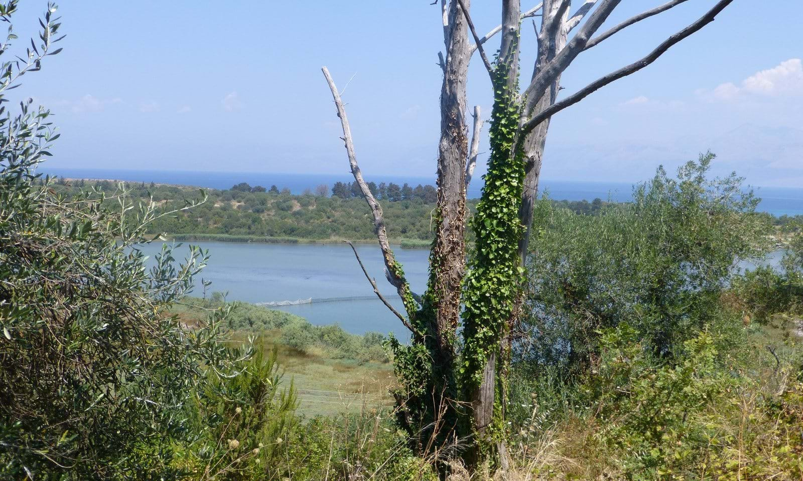 North Corfu land for sale