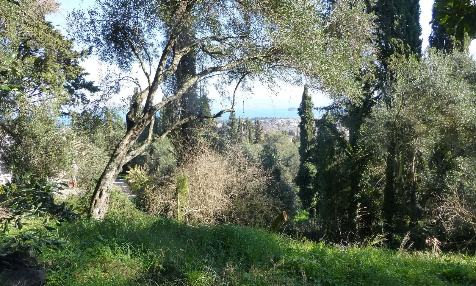 Land for sale in Evropouli Corfu