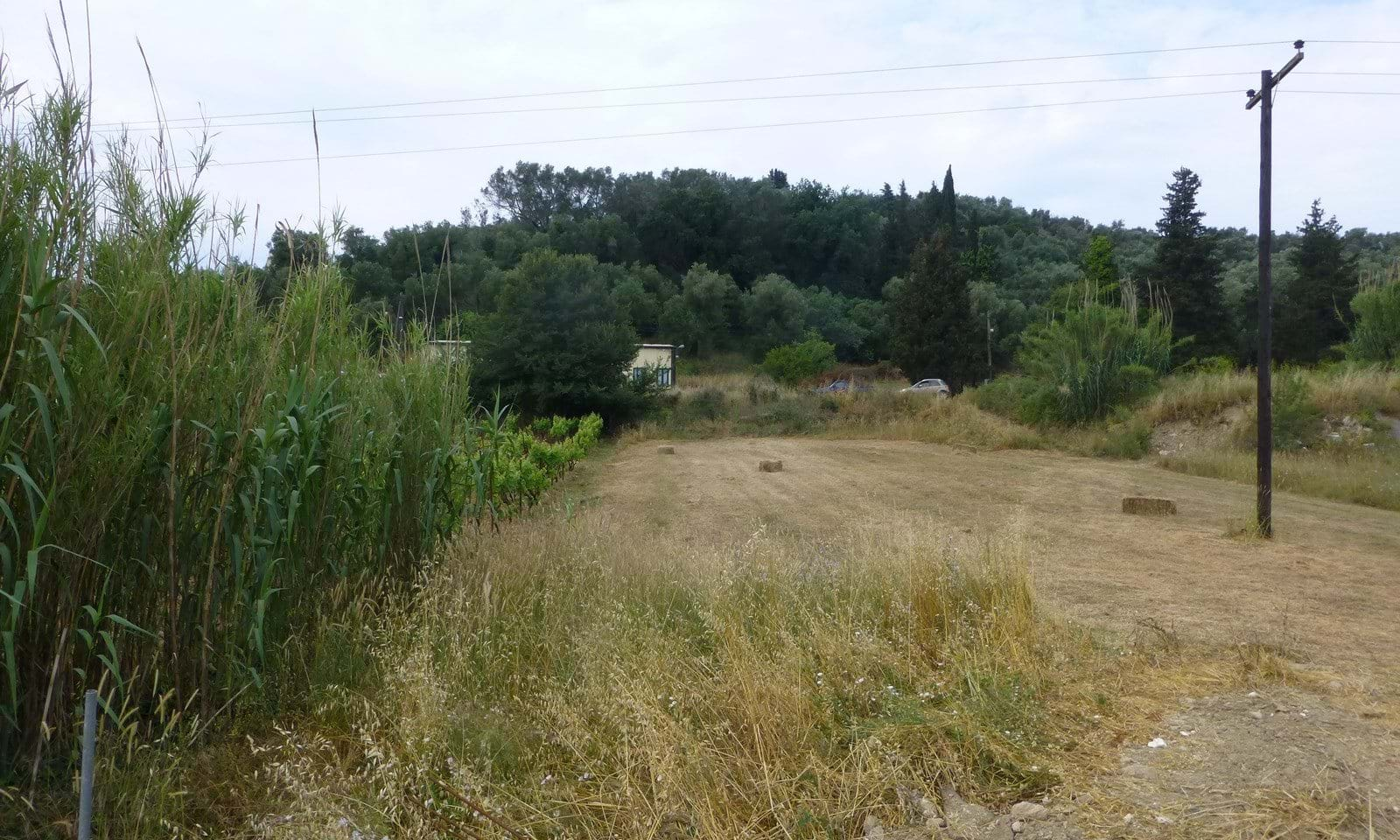 Land for sale in the Ropa Valley Corfu
