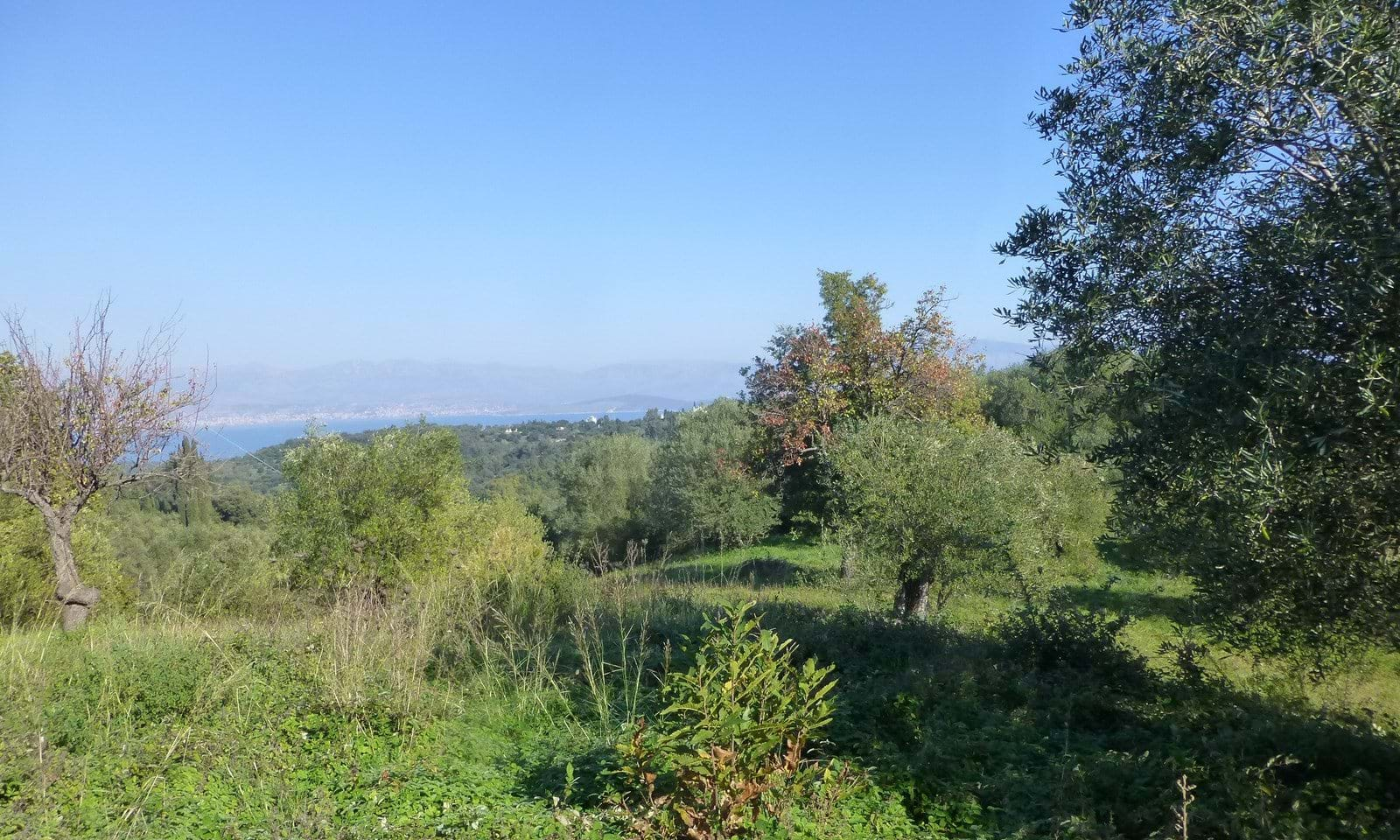 Land for sale in Cremithas, Corfu