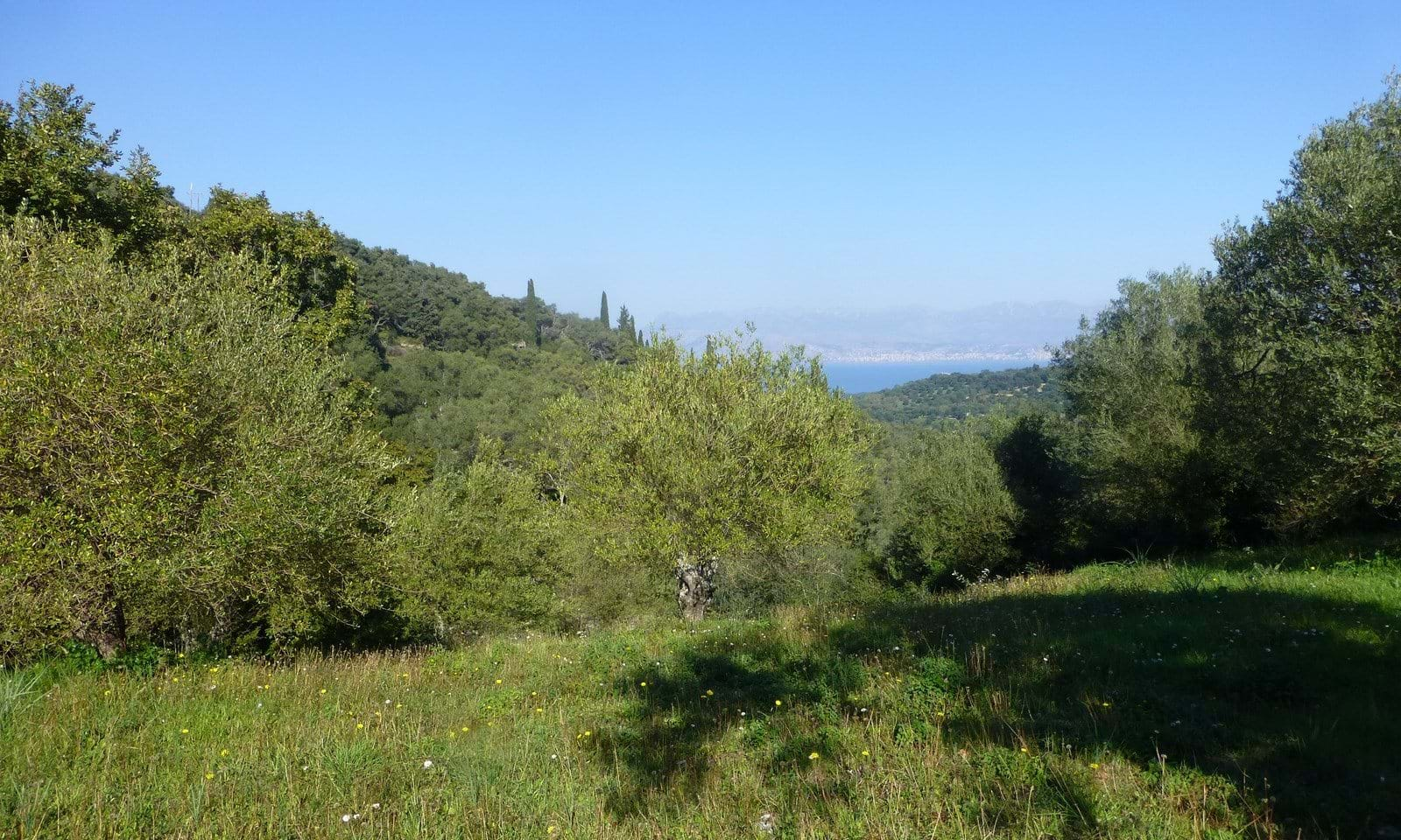 Building land for sale in Corfu
