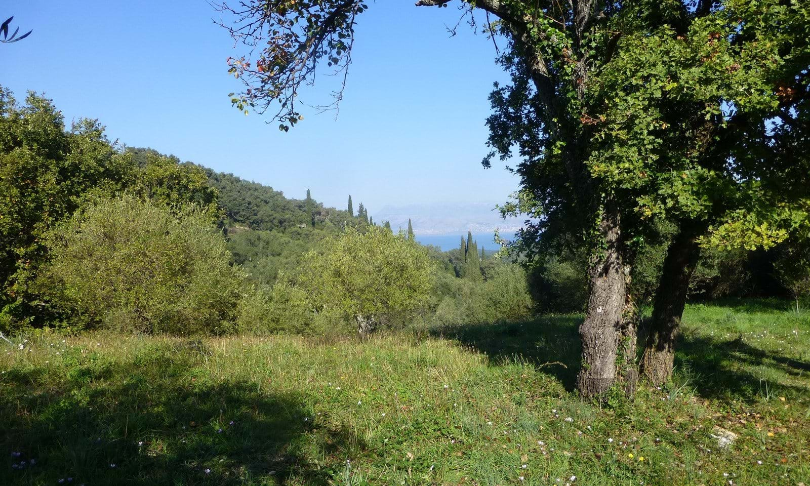Land for sale in Kremithas Corfu