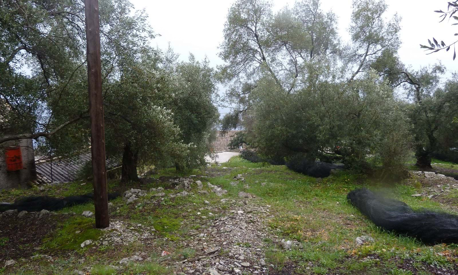 Land for sale in Katavolos Corfu
