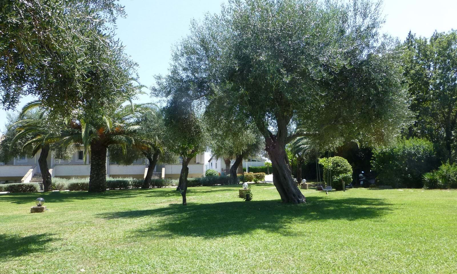 Commercial opportunity in north Corfu