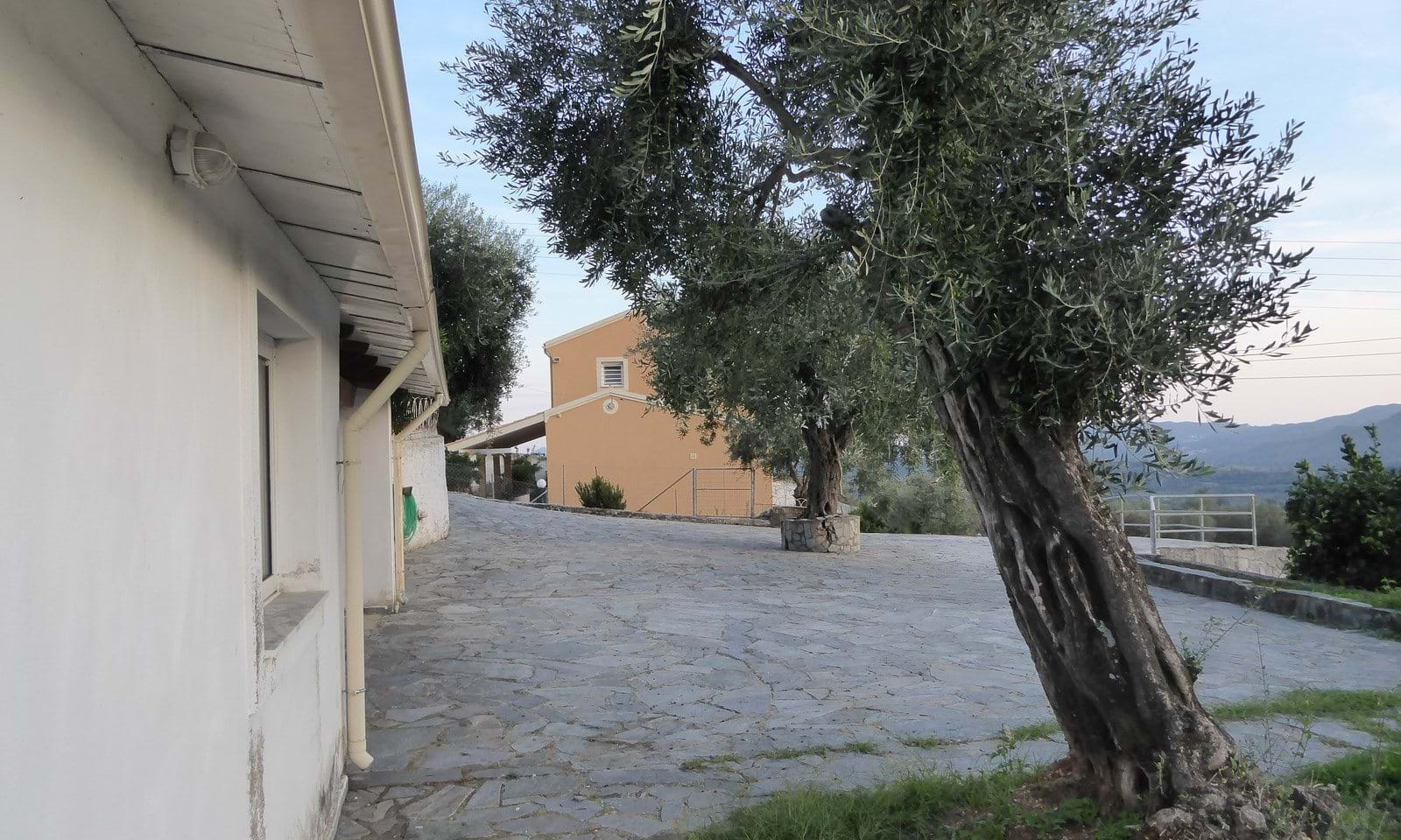 Land and houses for sale in Corfu