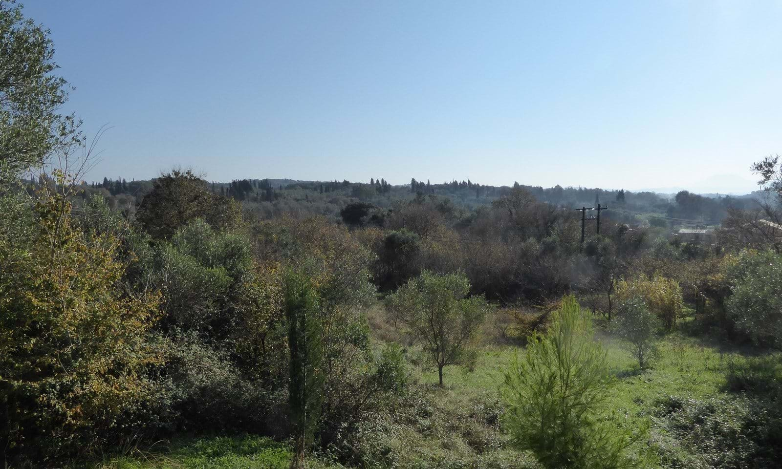 Building land for sale near Paleokastritsa Corfu