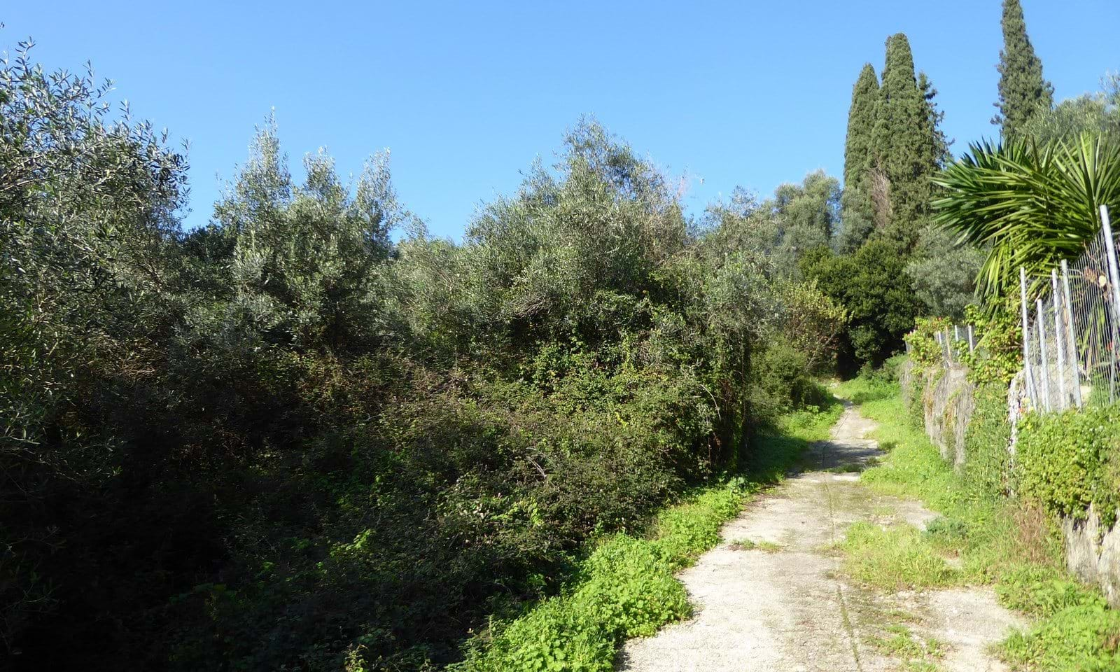 Gardelades land for sale Corfu