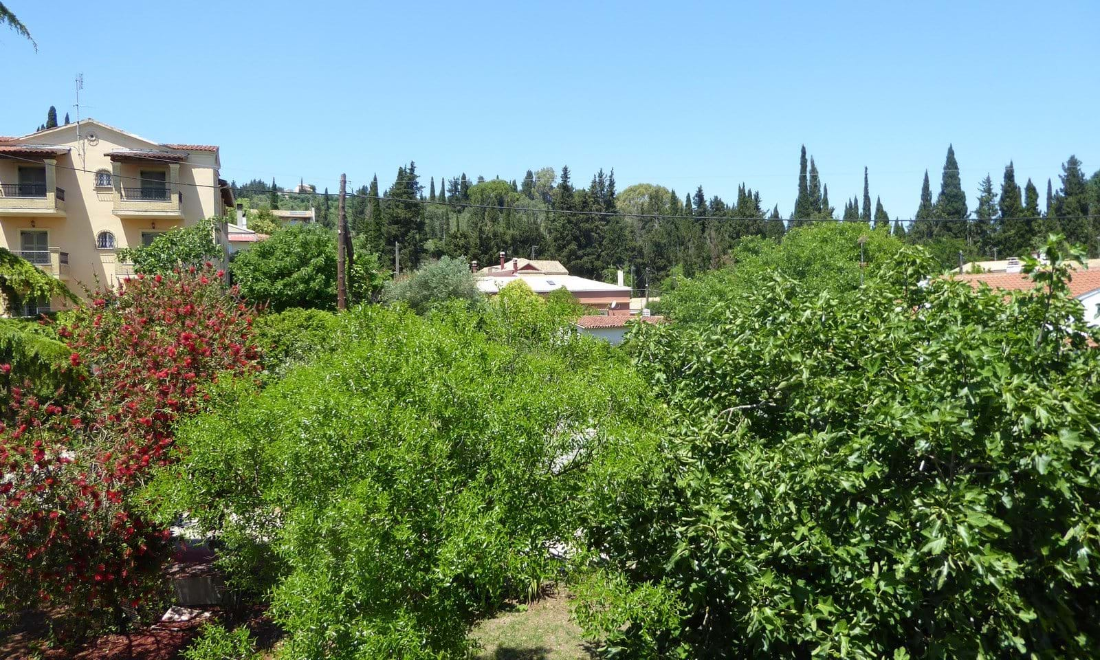 Houses and apartments for sale in Corfu