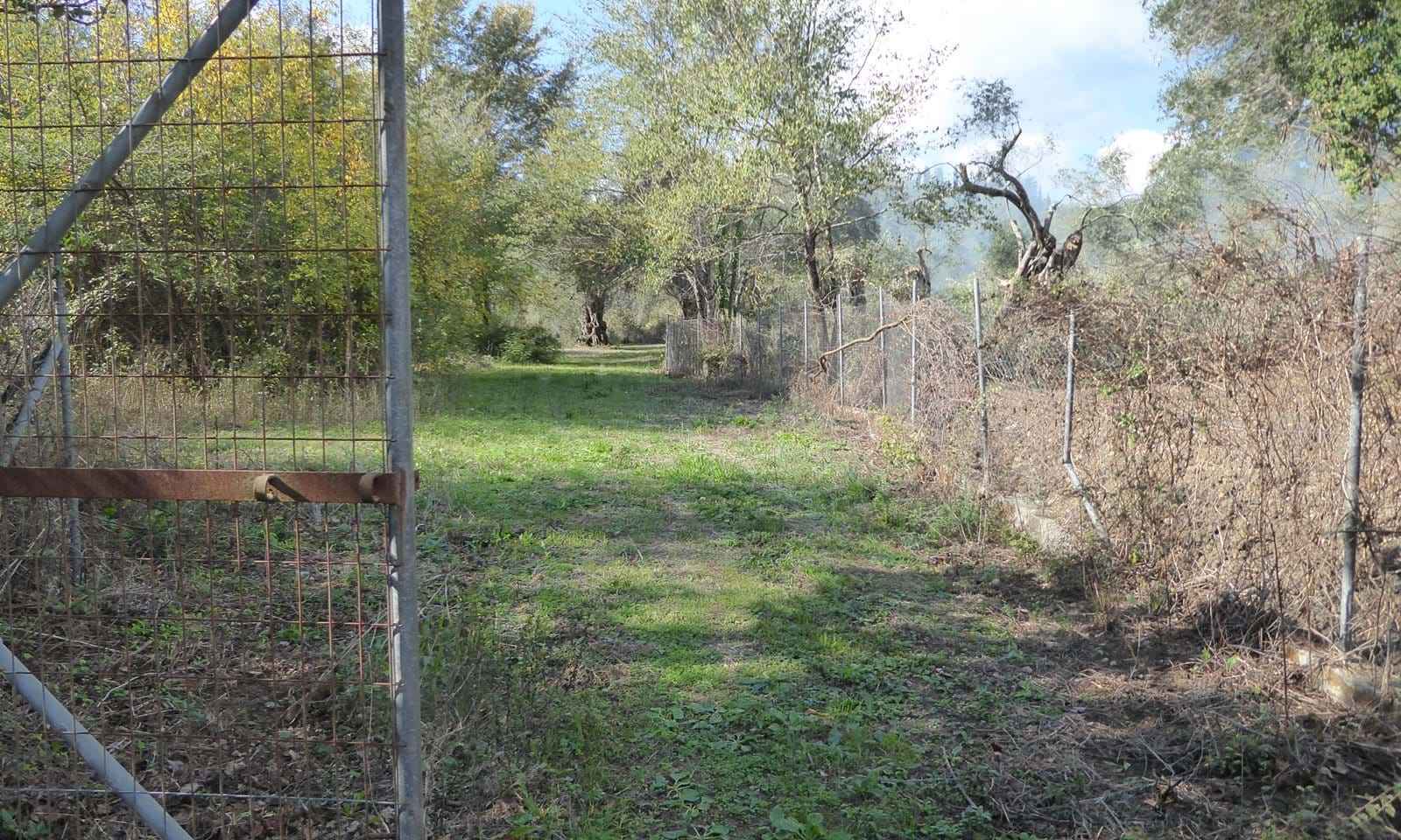 Property for sale in Ipsos Corfu