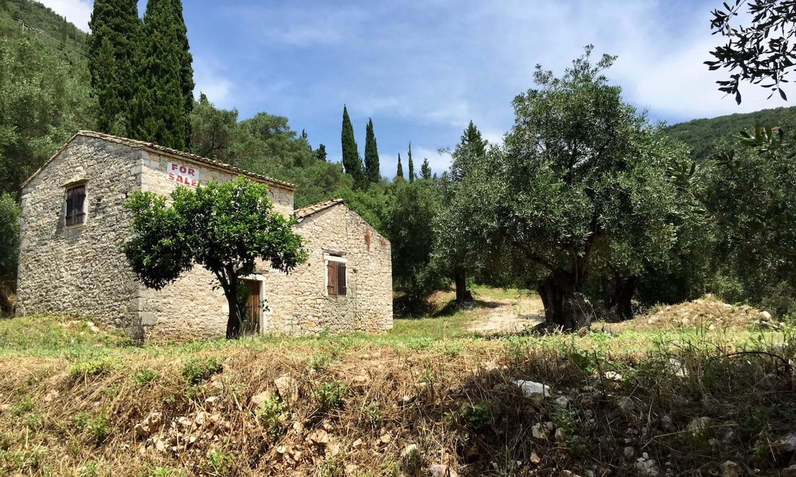 The Olive Press seen from the lower part of the property