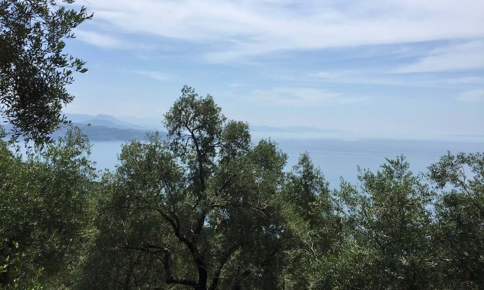 Land for sale in Katavolos, Corfu