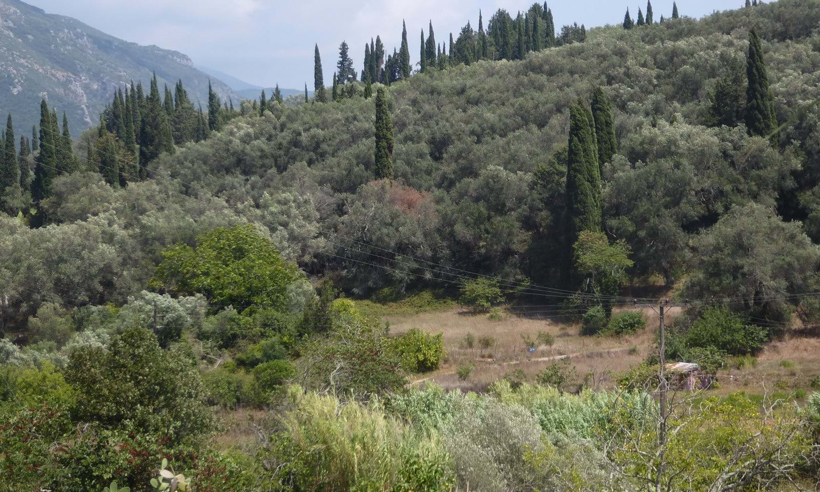 Doukades property for sale in Corfu