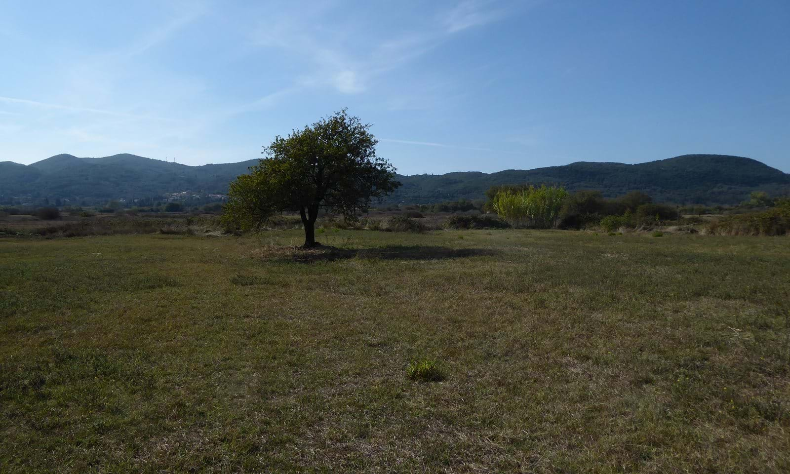 Ropa Valley land for sale in Corfu