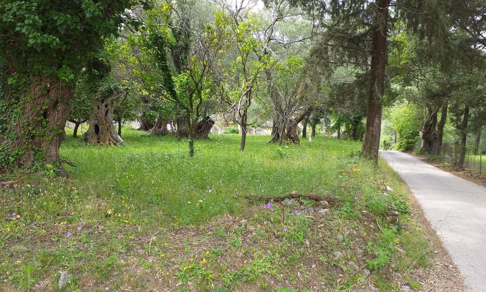 Building land for sale in Doukades
