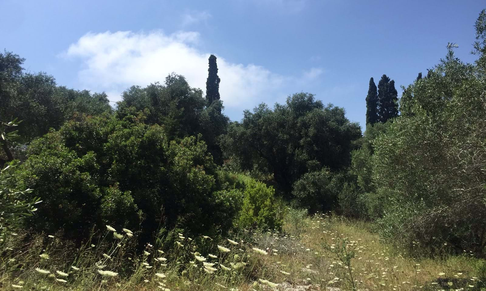 Paxos land for sale, Paxos real estate