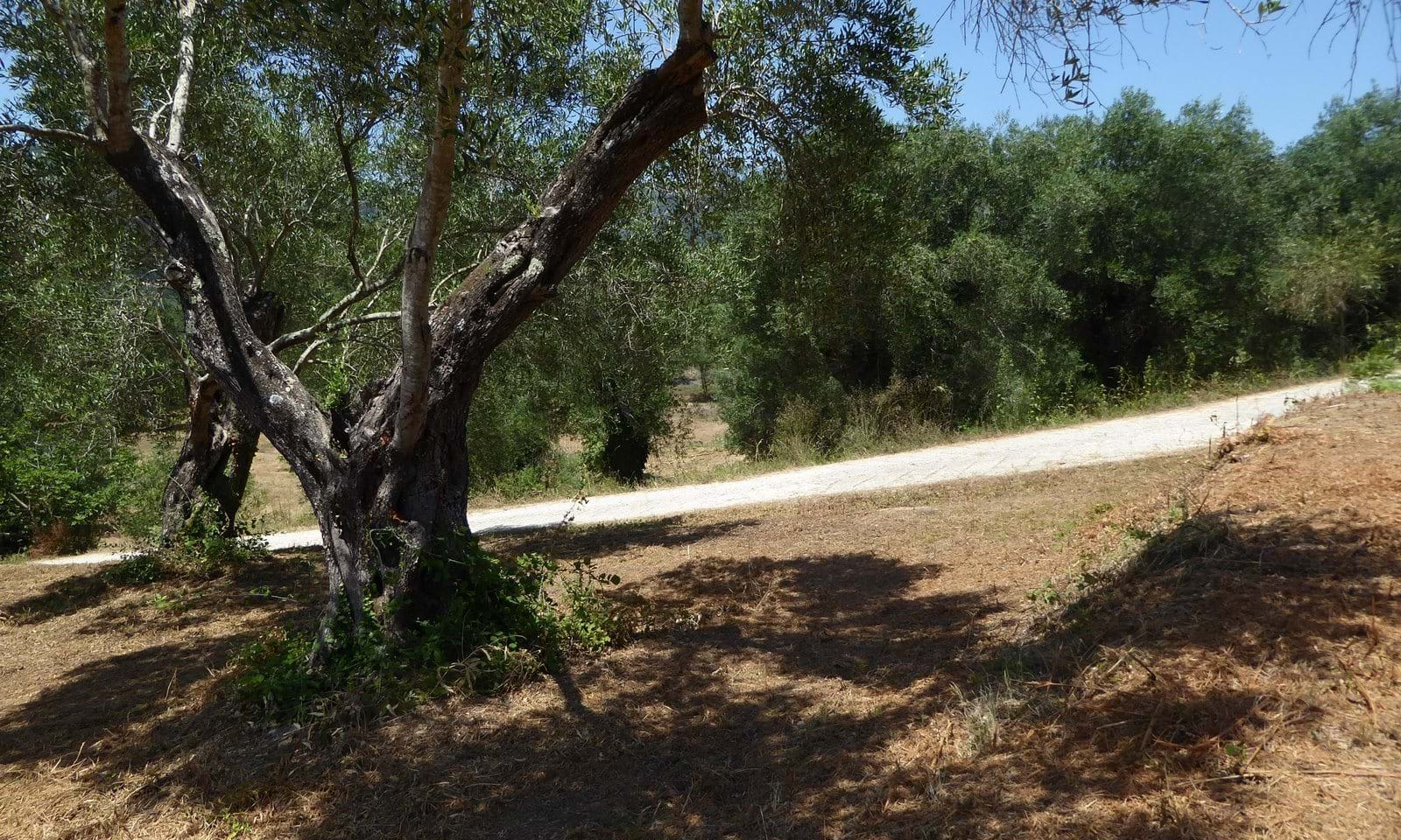 Gardelades land for sale in Corfu