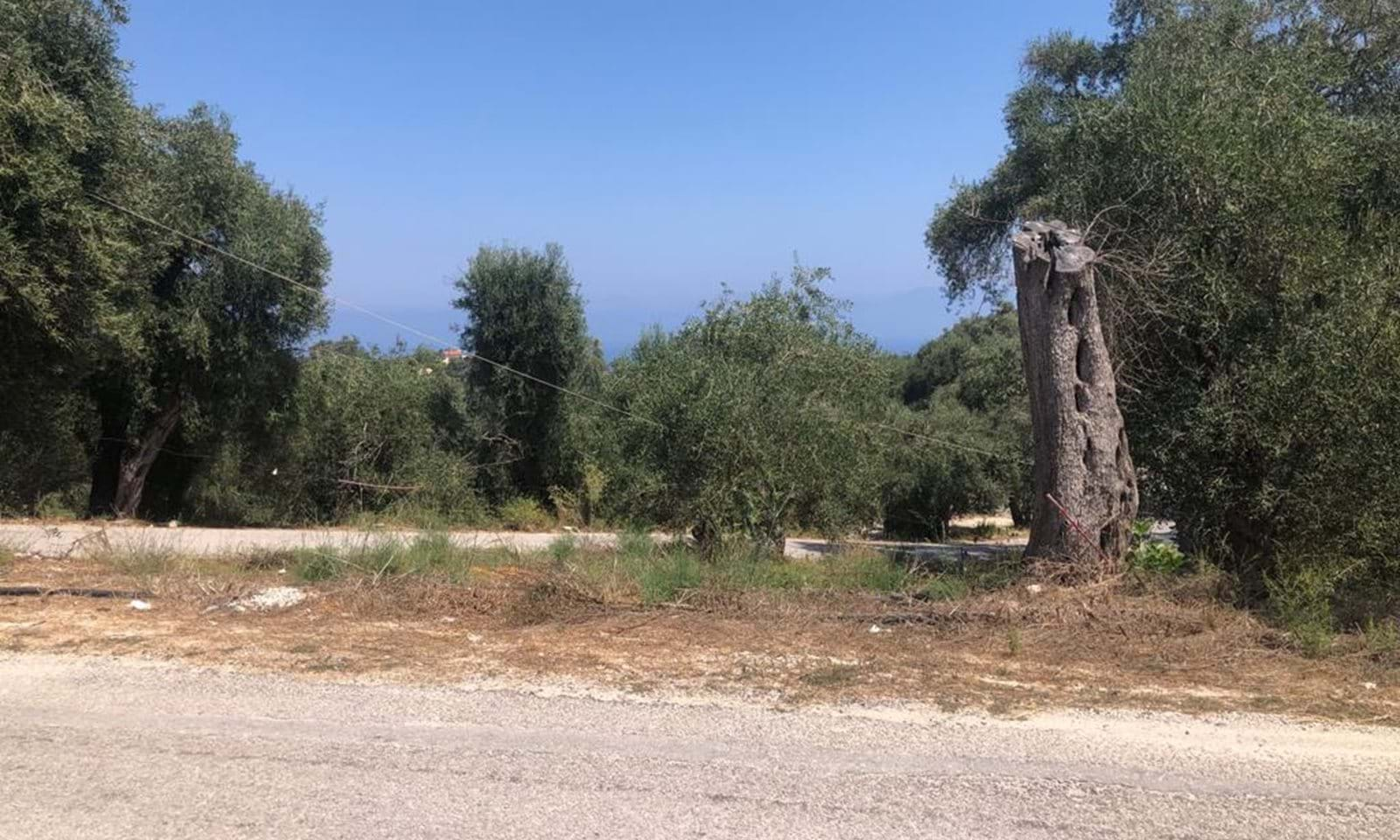 Land for sale in Paxos