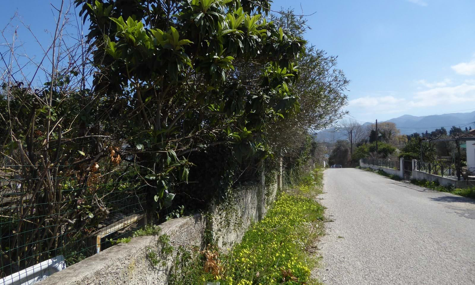 Property for sale in Astrakeri Corfu