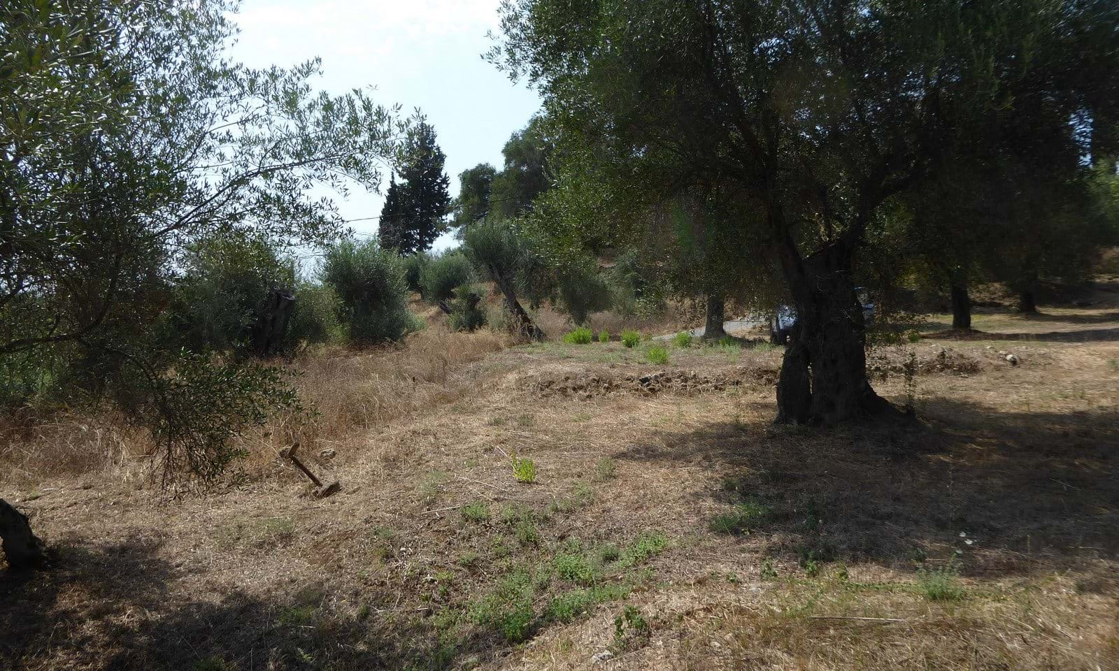Land for sale near Aqualand Corfu