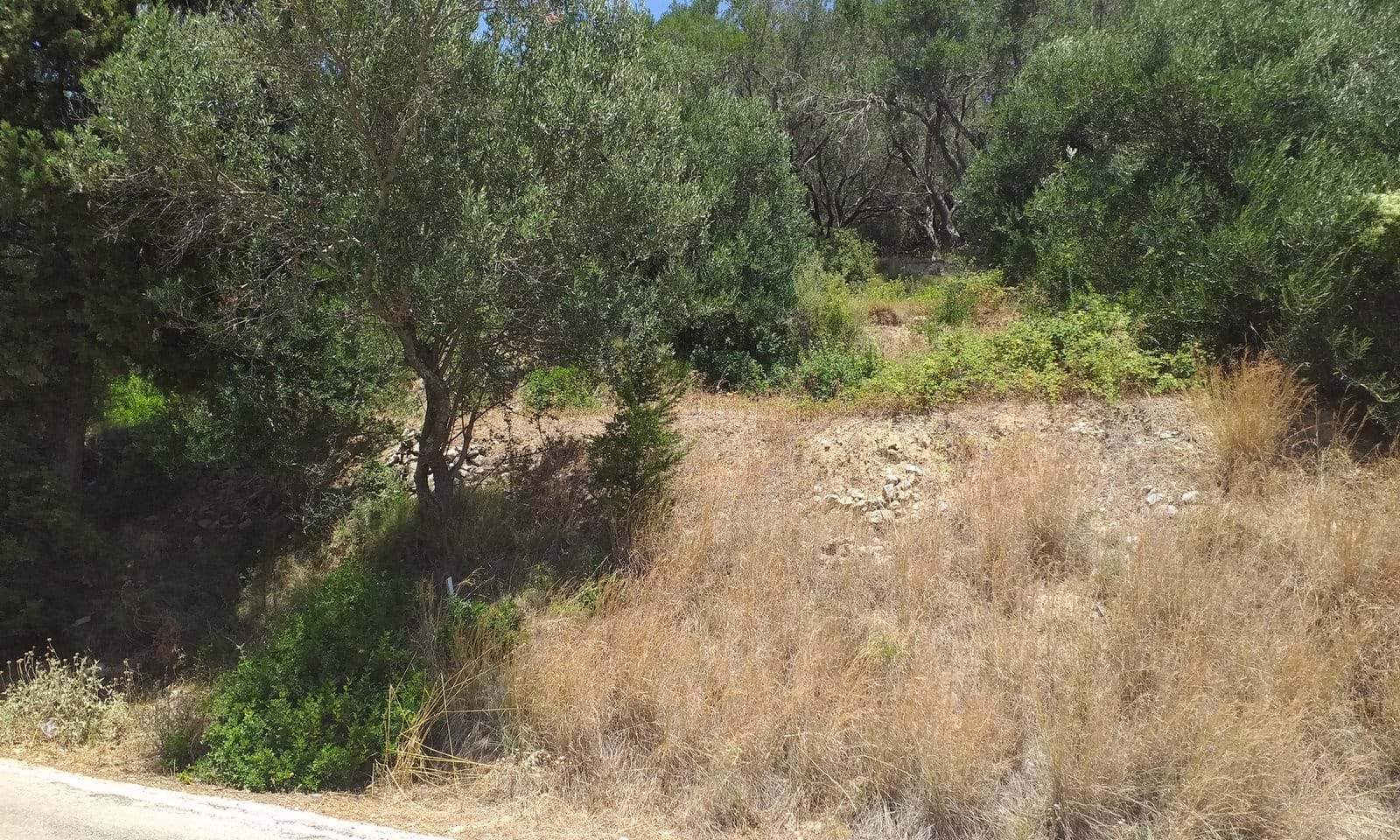 Sea view land for sale in North West Corfu